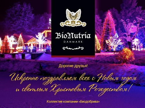 Дорогие друзья! Поздравляем с Новым годом и Христовым рождеством
